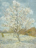 The Pink Peach Tree Giclee Print by Vincent van Gogh