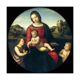Tondo of the Virgin and Child with John the Baptist and a Holy Boy (The Madonna Terrranuova) Reproduction procédé giclée par  Raphael