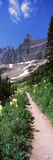 Hiking Trail at Us Glacier National Park, Montana, USA Reproduction photographique