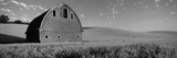 Old Barn in a Wheat Field, Palouse, Whitman County, Washington State, USA Photographic Print