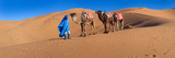 Tuareg Man Leading Camel Train in Desert, Erg Chebbi Dunes, Sahara Desert, Morocco Impressão fotográfica