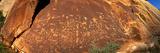 Ancient Petroglyphs at Newspaper Rock Utah USA Fotografisk trykk
