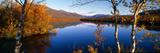 Lake Scene Sweden Fotografisk trykk