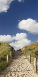 Path Through a Dune, Sylt, Schleswig-Holstein, Germany Fotografisk trykk