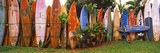 Arranged Surfboards, Maui, Hawaii, USA Reproduction photographique