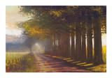 Sunset Highway Giclee Print by Amanda Houston
