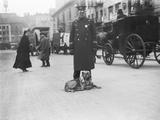 Policeman with Dog Photographic Print