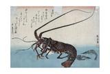 Shrimp and Lobster Giclée-tryk af Ando Hiroshige