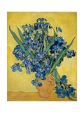 Iris Reproduction procédé giclée par Vincent van Gogh