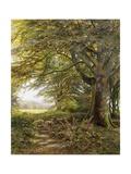 A Wooded Landscape with Foxgloves Gicléedruk van Edmund George Warren