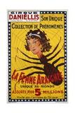 La Femme Araignee Poster Giclée-tryk
