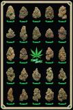 Best Buds Kunstdruck