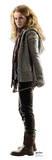 Hermione Granger Figura de cartón