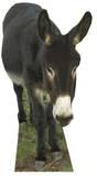 Donkey Pappfigurer
