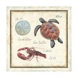 Oceanography II Premium Giclee Print by Daphne Brissonnet