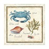 Oceanography IV Reproduction giclée Premium par Daphne Brissonnet