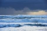 Waves, Paparoa National Park, West Coast, South Island, New Zealand Lámina fotográfica por Marco Simoni