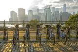 Brooklyn Promenade, Brooklyn, New York, Usa Photographic Print by Christian Heeb