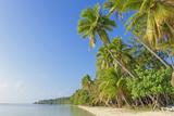 Tropical Beach, Nanuya Lailai Island, Yasawa Island Group, Fiji, South Pacific Islands, Pacific Lámina fotográfica por Marco Simoni