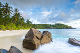 Palm Trees and Tropical Beach, Southern Mahe, Seychelles Fotografisk tryk af Jon Arnold