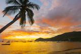 Caribbean, Martinique, Les Anse D'Arlet, Grand Anse Beach Photographic Print by Alan Copson