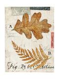 Nature's Leaves Konst av Angela Staehling