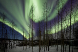Aurora Borealis IX Photographic Print by Larry Malvin