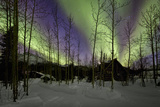 Aurora Borealis XII Photographic Print by Larry Malvin