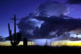 Blue Thunder Fotografisk trykk av Douglas Taylor