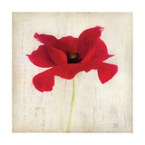 Red I Print by Amy Melious