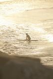 Summer Surfing I Reproduction photographique par Karyn Millet