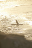Summer Surfing I Photographic Print by Karyn Millet