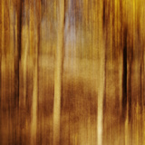 Sweeping Souls Impressão fotográfica por Roberta Murray