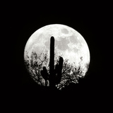 Moonrise in May II Photographic Print by Douglas Taylor