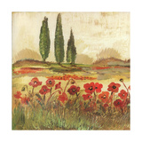Poppy Field II Poster di Gregory Gorham