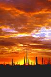 Sky a Fire I Fotografisk trykk av Douglas Taylor