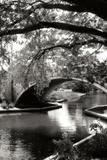Garden Bridge II Fotografisk tryk af Alan Hausenflock