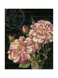 Les Jardin Roses Poster von Kimberly Poloson