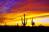 Equinox Sunset Fotografie-Druck von Douglas Taylor