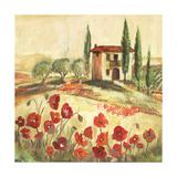 Poppy Field I Plakater af Gregory Gorham