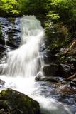Deep Woods Waterfall I Photographic Print by Alan Hausenflock