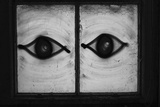 All Seeing Eyes Photographic Print by SubUrban Images