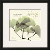 Serenity Ginko Prints by Albert Koetsier
