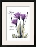 Purple Tulip, Hope Poster por Albert Koetsier