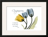 Tulip, Compassion Art by Albert Koetsier