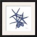 Sea Life in Blue Posters by Albert Koetsier