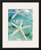 Seaglass 1 Posters by Alan Blaustein