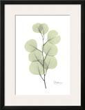 Eucalyptus in Pale Green Posters by Albert Koetsier