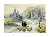 Leading the Sheep Giclée-vedos tekijänä Margaret Loxton