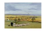 Sheep Farmer, Isle of Sheppey Giclée-vedos tekijänä Margaret Loxton